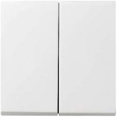 Gira System55 pushx2 cover -white