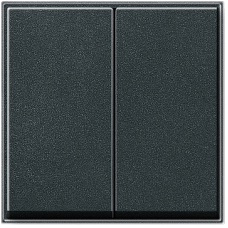 Gira TX44 pushx2 cover, anthracite